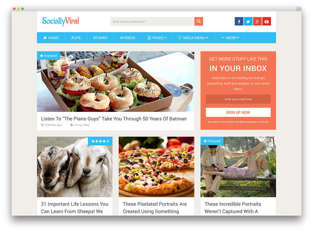 SociallyViral SEO friendly wordpress theme