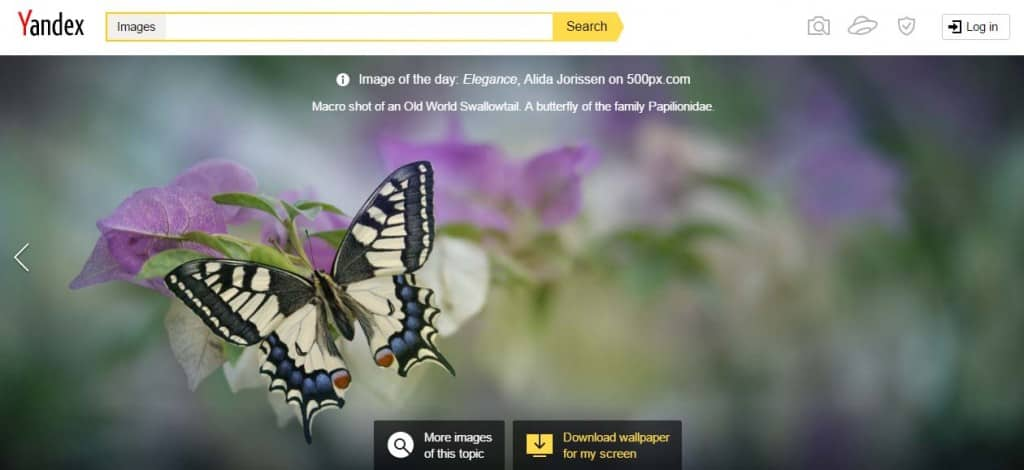 Yandex For Reverse Image Search